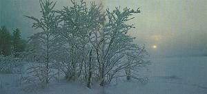 A beautiful winter scene from Finland